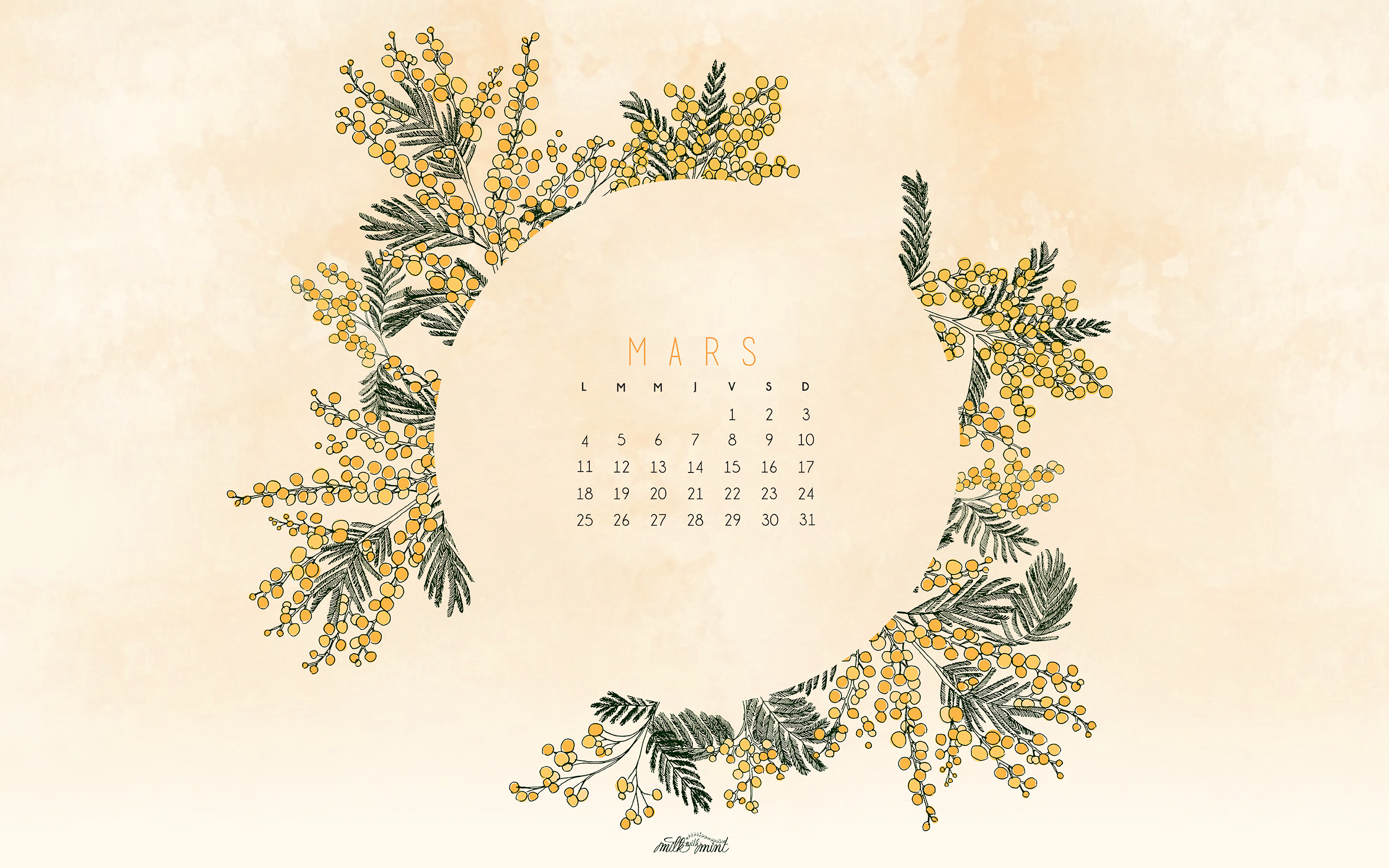 Calendriers Fond D Ecran Mars 2019 March 2019 Wallpaper